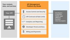 3scale API Management: Package, Distribute, Monitor, Manage, and Monetize your APIs with 3scale API management solution capabilities delivered all-in-one