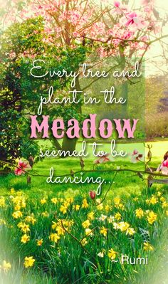 """""""Every tree and plant in the Meadow seemed to be dancing, those with average eyes would see fixed and still..."""" Rumi"""