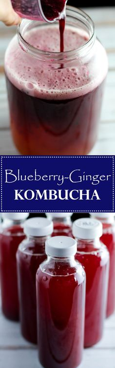 This flavored Blueberry Ginger Kombucha recipe is a tasty way to flavor your own. This flavored Blueberry Ginger Kombucha recipe is a tasty way to flavor your own homemade kombucha, a health drink full of nutrients and probiotics! Ginger Kombucha Recipe, Kombucha Flavors, Kombucha Tea, Recipe Ginger, Kombucha Brewing, Probiotic Drinks, Homebrewing, Yummy Drinks, Healthy Drinks