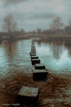 Stepping stones across de River Wharfe at Bolton Abbey, North Yorkshire_ England