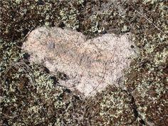 Heart showing through the lichen on the Canadian Shield, Muskoka Chakra Healing, Chakras, Reiki, Helping People, Heart, Chakra, Hearts