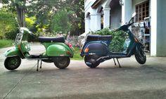 My Vespa Vespa, Motorcycle, Vehicles, Wasp, Hornet, Biking, Motorcycles, Vespas, Vehicle