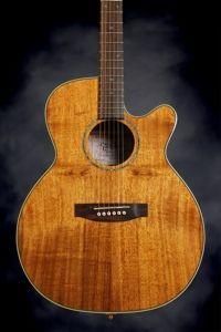 Takamine EG544CK im saving up for this beautiful guitar!