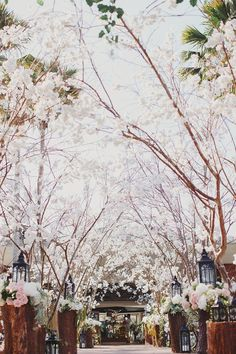 Doesn't this make you want to head to Bali for your wedding? Cherry blossom boughs as stunning wedding decor for Bali wedding {Facebook and Instagram: The Wedding Scoop}