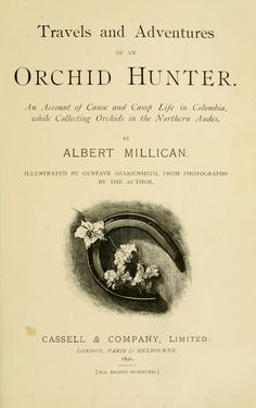 Travels and adventures of an orchid hunter by Albert Millican