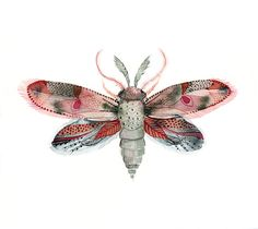 Moth- Fuschia, Red, Pink and Blue archival print of watercolor, minimalist - Amber Alexander