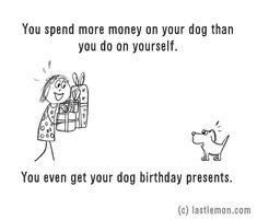 Minden pénzed a kutyádra költöd.