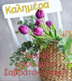 Good Night, Good Morning, Herbs, Scenery, Landscape, Twitter, Recipes, Beautiful, Nighty Night