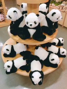 테디베어 박물관에서 판다인형~ 판다인형이 너무 귀엽네요 ^^