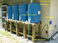 Rain barrel setup for water storage and watering plants. Frame lattice work with plants to keep out of sight.
