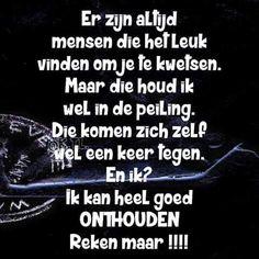kwetsende spreuken 515 beste afbeeldingen van spreuken en gezegden   Dutch quotes  kwetsende spreuken