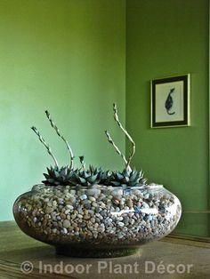 Virtual book tour for Indoor Plant Decor, plus a Bonsai Tool Set Giveaway | Digging