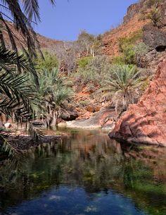 https://flic.kr/p/naa8Ww | Wadi, Socotra Island | Yemen