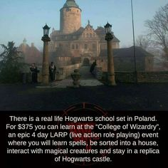 I wanna LARP Harry Potter. I'd finally get to show my ravenclaw roots! Harry Potter Cake, Harry Potter Fandom, Harry Potter Memes, Harry Potter World, Potter Facts, Harry Potter Fun Facts, Ravenclaw, Fandoms, It's My Life