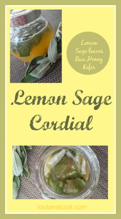 Lemon and sage cordial is amazing for hot flushes, hormonal balance, memory and immune health. Not to be used when pregnant or breastfeeding. Loula Natural Pin
