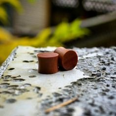 We suggest framing that noggin with a pair of Saba Wood plugs. The minimalist style of these plugs really stands out!  www.crownedjewelry.com  Affordable luxury to fill your holes  #plugs #pierced