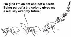 Ants, Sayings, Lyrics, Ant, Quotations, Idioms, Quote, Proverbs