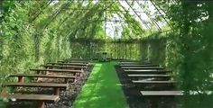 Tree Church is a living, breathing chapel made of real trees Tree-Church-Barry-Cox-New-Zealand-final – Inhabitat - Sustainable Design Innovation, Eco Architecture, Green Building