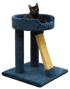 Sisal Cat Scratching Post for Big Cats in Blue Wood Cat Scratcher and Bed -- Want to know more, click on the image. (This is an affiliate link and I receive a commission for the sales) #MyPet