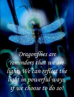 Inspirational Words Love Quotes — Choose to be the lig inspiration positive words Dragonfly Quotes, Dragonfly Art, Dragonfly Symbolism, Dragonfly Meaning, Dragonfly Images, Butterfly Quotes, Dragonfly Necklace, Bernardo Y Bianca, Animal Spirit Guides