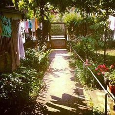 A Garden..