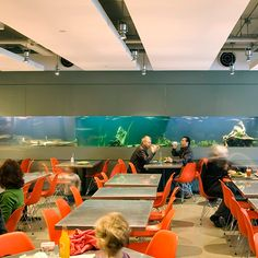 Best Museum Restaurants in the U.:Academy Café, California Academy of Sciences ((Owner Charles Phan) Slanted Door, American History Museum, Museum Cafe, San Francisco Food, Conservatory Garden, Garden Cafe, Renzo Piano, Science Museum, Places To Visit