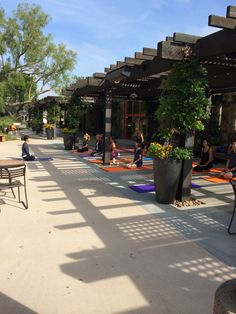 """Fifteen early risers joined us for the first """"Yoga at the Park"""" session today. The focus of the class was self navigation."""