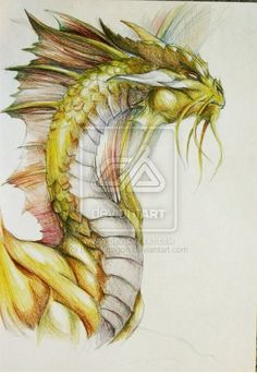 Gold Dragon Portrait by BrassDragon on DeviantArt Dnd Dragons, Cool Dragons, Dungeons And Dragons, Gold Dragon, Blue Dragon, Dragon Art, Dragon Tales, Pokemon Coloring, Dragon Rider