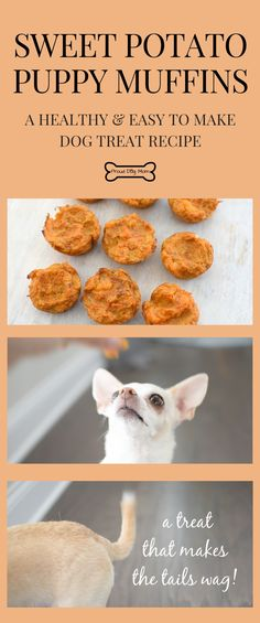 These Sweet Potato Puppy Muffin Dog Treats Are Easy To Make Loaded With Healthy Ingredients Grain-Free Dog Treat Recipe Gluten-Free Dog Treats DIY Project DIY Dog Treats Homemade Snacks For Dogs # Puppy Treats, Diy Dog Treats, Healthy Dog Treats, Treats For Puppies, Healthy Pets, Dog Biscuit Recipes, Dog Treat Recipes, Dog Food Recipes, Recipe For Dog Biscuits