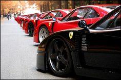 Long line of Ferrari F40s. Stunning. pic.twitter.com/jKru2dji64