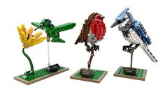 Amazon.com: LEGO Ideas 21301 Birds Model Kit: Toys & Games