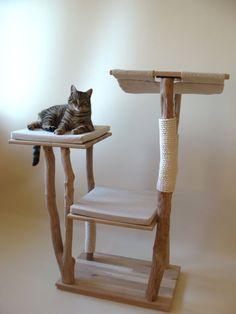 Arbre à chats modèle 'Céphée'  http://www.chatperche.fr/fr/arbres-a-chats-bois/67-arbre-a-chat-design-en-bois-coussins-et-hamac.html