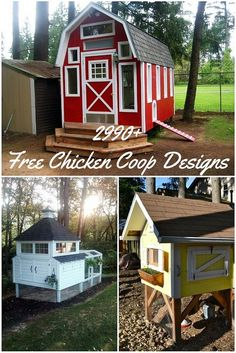 Free Chicken Coop Designs - If you go through the work and expense of raising chickens for eggs, it's important to provide them with a predator-resistant home so they can sleep securely at night. Get some homesteading inspiration and make your own chicken coop!