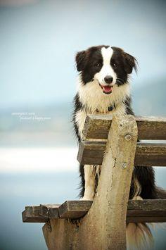 Sittin, waiting, wishing...