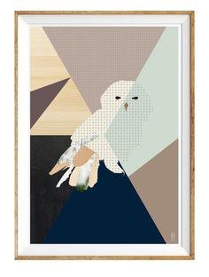 SnowOwl – baby owl in the shelter. www.plakatOmat.dk  copyright PlakatOmat