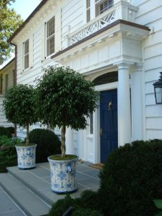Lovely potted trees in blue and white planters flank the entryway of this white clapboard traditional. Wonderful ocean blue door with gold fox's head knocker. Intricate millwork and Chippendale fretwork frame the portico. Topiary Trees, Potted Trees, Boxwood Topiary, Potted Plants, White Planters, Garden Planters, Tall Planters, Front Entrances, Spring Garden