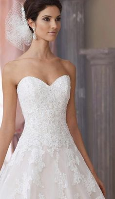 Strapless Corded Lace Applique Tulle and Organza Over Taffeta Wedding Gown