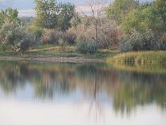 Pond at the eastside dog park, by the soccer fields, Casper, Wyoming