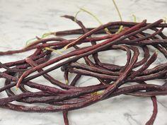 Pole Beans DOLICO-OCCHIO NERORE Italian 20 seeds