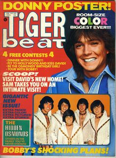 Tiger Beat David Cassidy Osmonds Bobby Sherman Michael Gray