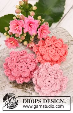 "Crochet DROPS kalanchoe flowers in ""Safran"". ~ DROPS Design. Free pattern."