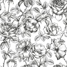 Black and White Floral Wallpaper anewall.com