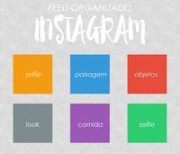 feed organização