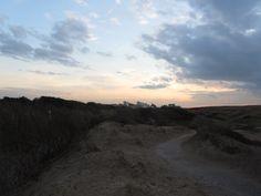 Dunes of Noordwijk