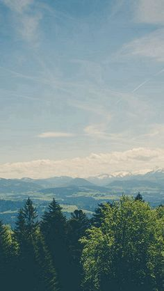 Green Land Sky Blue Summer Nature #iPhone #5s #wallpaper