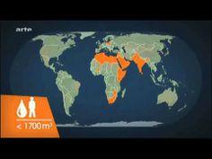 ▶ 10.01.2012 (Arte) Le dessous des cartes - Conflits 2030, les facteurs (1sur2) - YouTube
