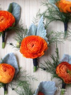 Orange Ranunculus Boutonnieres finished with Dusty Miller & Tree Fern - with Summit Society blue ribbon Orange Wedding Flowers, Prom Flowers, Bridal Flowers, Flower Bouquet Wedding, Yellow Flowers, Floral Wedding, Orange Flower Bouquets, Orange Boutonniere, Wedding Boutonniere