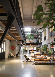4-fosbury-and-sons-muebles-madera-sillas-wishbone-coworking-amberes