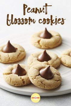The problem with a is that you have to give up your cookies. Or maybe you just forgot these Peanut Blossom cookies on the counter. Peanut Blossom Cookies, Peanut Blossoms, Easy Desserts, Delicious Desserts, Yummy Food, Holiday Baking, Christmas Baking, Cookie Recipes, Dessert Recipes