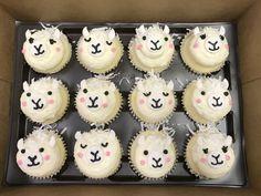 Llama Birthday, Baby Birthday, Birthday Parties, Birthday Ideas, Cute Cupcakes, Birthday Cupcakes, Cakepops, Baby Llama, Llama Llama
